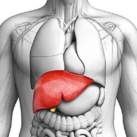 مرض التهاب الكبد